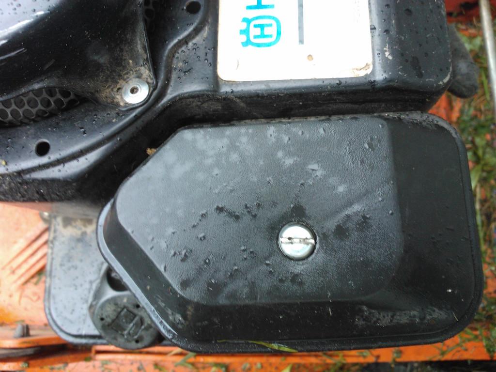 Ruohonleikkurin ilmansuodattimessa öljyä